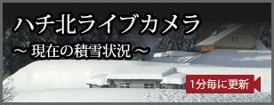 ひさ家前・ハチ北 積雪状況