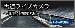 雪道ライブカメラ